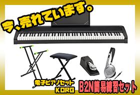今、売れてます!電子ピアノ KORG B2N 簡易練習セット!